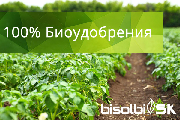 bisolbi100biofertilizer